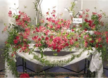 自由葬の例